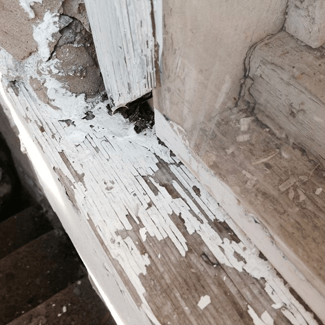 Lead paint being removed for windows in an older home.